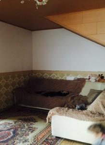 Дом Центральная , пос. Владимирово
