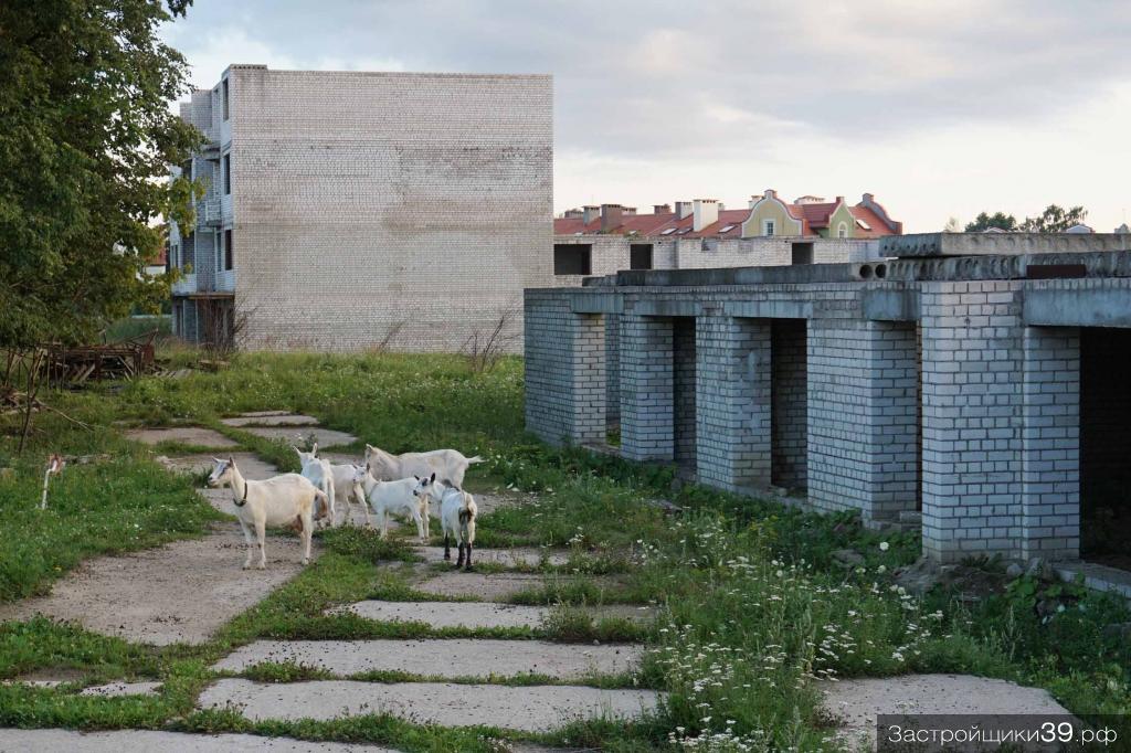Долгострой на улице Невского: кто заработает на банкротстве «Ганзы-Сервис»?
