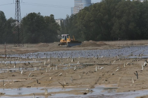 Остров Октябрьский готов к строительству стадиона