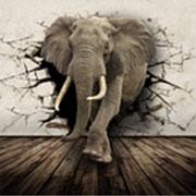 Магазин/салон Слон